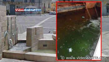 Andria: cattivi odori ed acqua visibilmente sporca dalla vasca della fontana di Piazza Catuma - VideoAndria.com