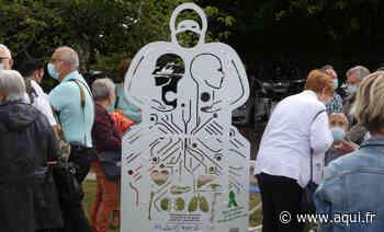 Pessac : une stèle pour honorer les donneurs d'organes et leurs proches - Aqui!