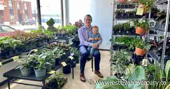 Plants of all kinds now can be found in downtown Estevan - Estevan Mercury