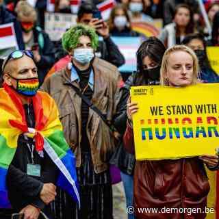 Op ramkoers met Hongarije: 16 Europese leiders roepen op om te blijven vechten voor LGBTI-rechten