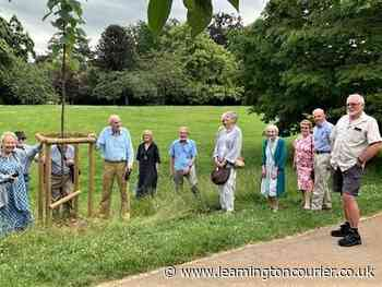 Tree planting ceremony held in Leamington park to honour resident's contribution to the town on his 95th birthday - Leamington Courier