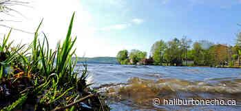 Report highlights need for shoreline education - Haliburton County Echo
