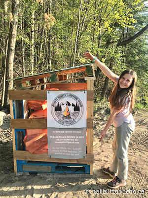 Roasty Toasty Campfire Wood focus of 11-year-old entrepreneur - Haliburton County Echo