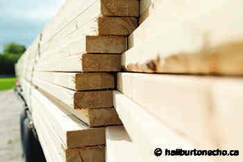 Unprecedented lumber situation part of perfect storm of factors - Haliburton County Echo