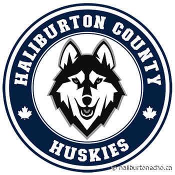 Storm element to inaugural Huskies pack - Haliburton County Echo