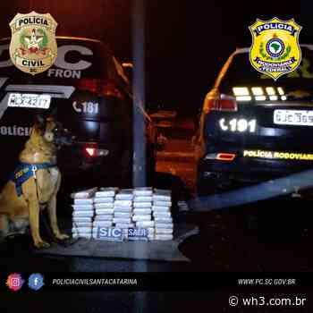 CUNHA PORÃ: Polícia Civil e PRF apreendem quase R$ 2 milhões em cocaína - WH3