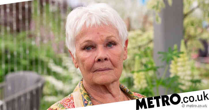 Dame Judi Dench, 86, fears being cast as 'an old woman in a home' as she gets older