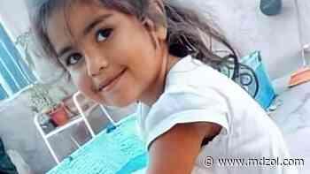 Búsqueda de Guadalupe: el testimonio que podría ser clave - MDZ Online