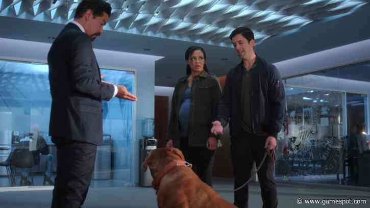 Disney Plus's Turner And Hooch Reboot Show Gets Slobbering First Trailer