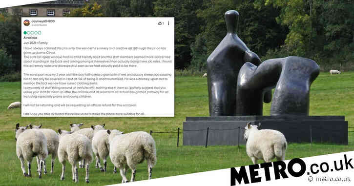 Furious parent vows to never return to park after boy, 2, 'slips in sheep poo'