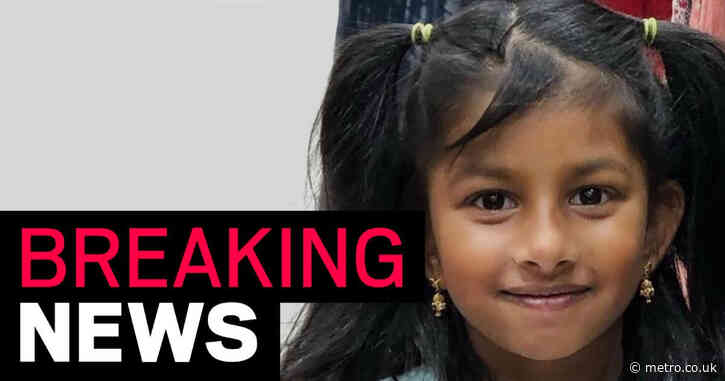 Mother admits stabbing daughter, 5, to death at family home