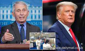 Fauci resisted Trump's call to cancel grant tied to Wuhan lab