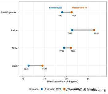 Updated analysis of US COVID-19 deaths shows drops, disparities in average lifespans