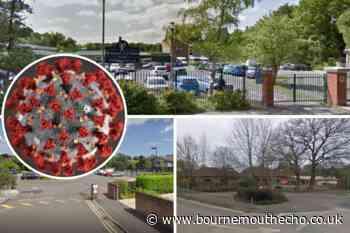 Covid: Students at Wimborne schools isolate - Bournemouth Echo