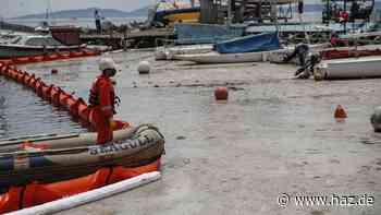 """Schleimplage erreicht die Ägäis: """"Man kann das Meer gar nicht mehr sehen"""""""
