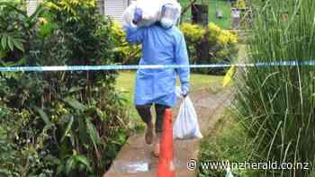 Covid 19 coronavirus: Fiji crisis worsens, 308 new positive cases overnight - New Zealand Herald