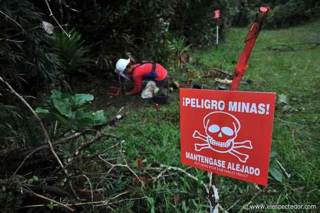 Mueren una mujer indígena y su hija por mina antipersonal en Murindó (Antioquia) - El Espectador