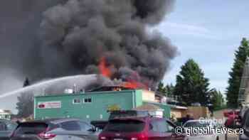 Fire consumes Westridge Curling Club in Stony Plain, Alta | Watch News Videos Online - Globalnews.ca