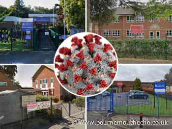 Covid: 10 schools across BCP record cases this week