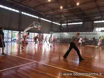 Il Fratta Umbertide espugna il campo del Basket Tolentino - Serie C Silver Coppa Centenario Girone B - Basketmarche.it