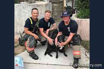 Firefighters Rescue Dog From Burning Fourplex in East Cheyenne