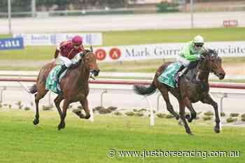 Elusive Express impresses in Cranbourne debut - Just Horse Racing