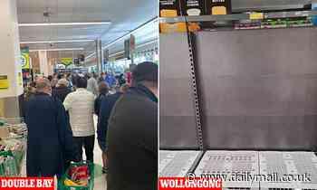 Australia Covid: Hundreds of panic-buyers hit up Double Bay Woolies