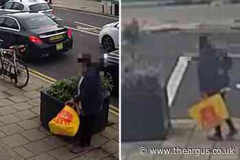 CCTV captures plant thief in Boundary Road, Portslade