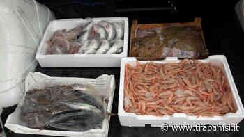 """Donate alla """"Fondazione San Vito"""" pesce e derrate per Mazara del Vallo e Marsala - TrapaniSi - Trapanisi.it"""