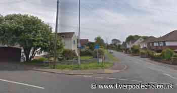 Wirral MP against plan for 18-metre tall 5G mast 'yards away' from family home - Liverpool Echo