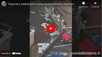 Temporali e sradicamenti a Laives. Diversi interventi. Danni per le strade - Il video e le foto - La Voce di Bolzano