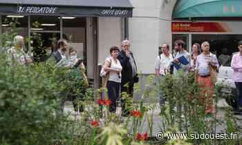 Villes et villages fleuris : en Gironde, Blanquefort veut garder sa quatrième fleur - Sud Ouest