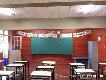 Aulas presenciais de escolas estaduais de Carangola, Espera Feliz, Muriaé, Ubá e VRB voltam no dia 28/06 - Guia Muriaé