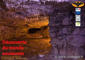 Découverte du monde souterrain dans l'Oise, près de Senlis Carrière près de Senlis mercredi 7 juillet 2021 - Unidivers