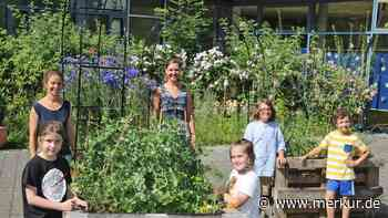 Geretsried: Karl-Lederer-Schule hat Erfolg mit Schulgarten - Merkur Online