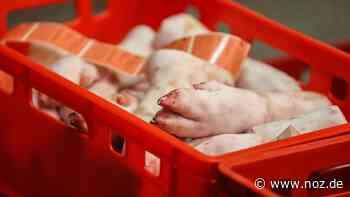 Händler transportiert verdorbene und ungekühlte Lebensmittel auf der A1 bei Damme - NOZ