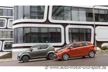 Kia Picanto und Suzuki Ignis im Test: Kleinstwagen gegen Micro-Crossover - auto motor und sport
