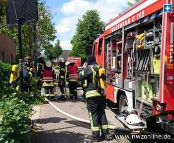Politik: Feuerwehren in der Gemeinde Wardenburg sollen auf den Prüfstand - Nordwest-Zeitung
