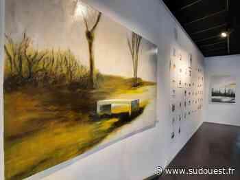 Mourenx : Nicolas Canu expose ses toiles sur bois et dessin à la Galerie d'art - Sud Ouest