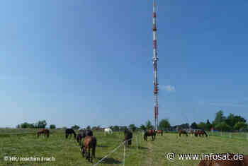 Neue DAB+ Antenne in Hessen funkt am Sender Würzberg bei Michelstadt - InfoDigital / INFOSAT