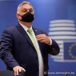 'Zwarte schapen' als Hongarije uit de EU zetten? Dat gaat helemaal niet