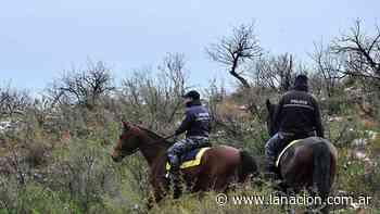 Policías de siete provincias participan de la búsqueda de Guadalupe - LA NACION