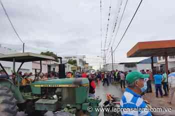 Productores de Sanare reducen cosechas por falta de gasolina - La Prensa de Lara
