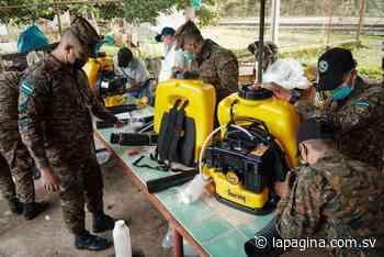 FAES ayuda en el control de brote de langostas en Chinameca, San Miguel - Diario La Página