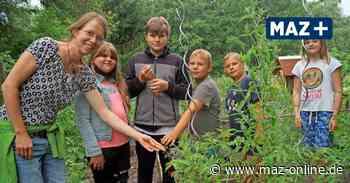 Elki in Wittstock bietet buntes Sommerferienprogramm - Märkische Allgemeine Zeitung