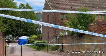 Murder probe after teenager stabbed to death in another 'senseless loss of life'