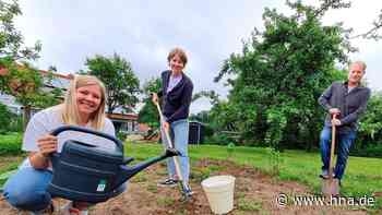 Wolfhager Jugendarbeiter bereiten Mitmach-Garten vor - HNA.de