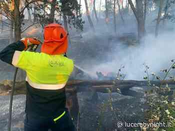 Il Comune di Lucera per la prevenzione degli incendi - lucerabynight.it