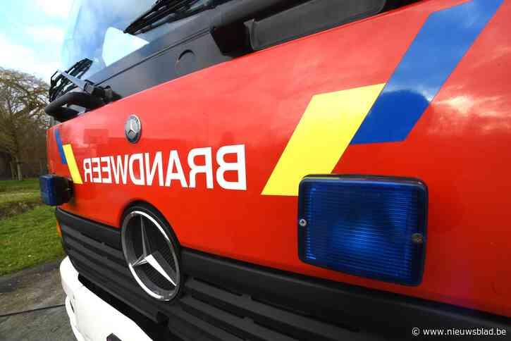 Twee voertuigen vermoedelijk in brand gestoken in Hechtel
