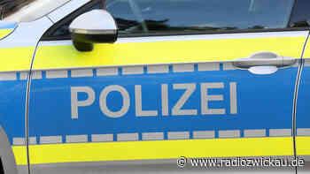 Treuen: Auto geklaut und gegen Baum gesetzt - Radio Zwickau